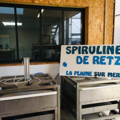 spiruline pays de retz local