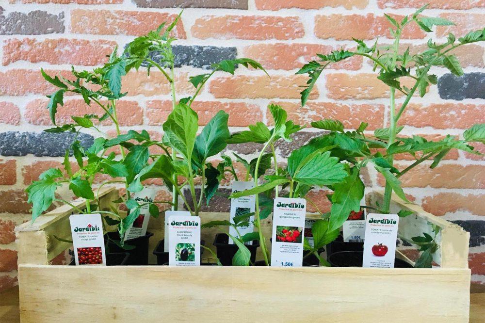 plant bio magasin bio